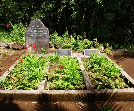 Das Grab von John Adams wird heute noch gepflegt