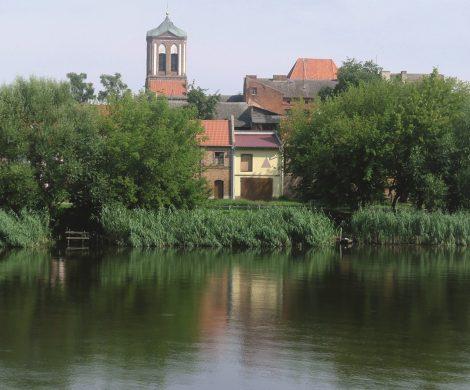 Natur und idillysche Landschaften prägen die Fahrt der Saxonia auf der Oder