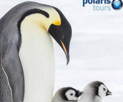 Polaris Tours stellt Katalog 2018 vor