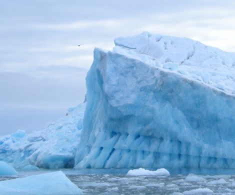 In der Antarktis ist der Einsatz von Schweröl bei Kreuzfahrtschiffen bereits verboten, jetzt soll dies auch in der Arktis umgesetzt werden.