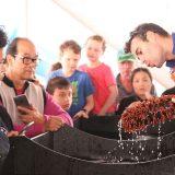 Am Great Barrier Reef vor Australien können Touristen jetzt ein eintägiges Praktikum als Meeresbiologe absolvieren. Gemeinsam mit Wissenschaftlern und Studenten gehen sie nach einer Einführung auf Schnorcheltour und notieren Beobachtungen und Funde auf einer Unterwasserschreibtafel.