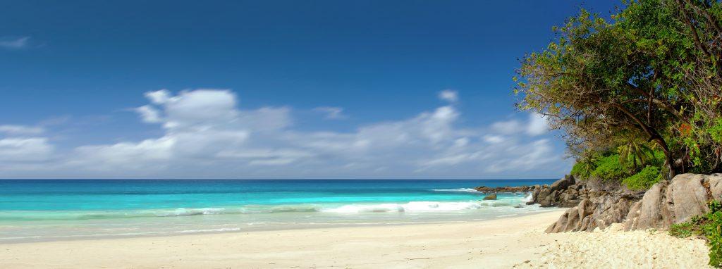 Die Seychellen werden ein Meeresschutzgebiet von der Größe Großbritanniens einrichten. Es soll rund ein Drittel der Gewässer des Landes im Indischen Ozean umfassen. Damit soll die einzigartige Artenvielfalt langfristig geschützt werden.
