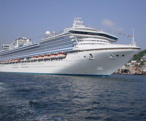 Princess Cruises hat für den Sommer zahlreiche prominente Gäste verpflichtet, um die Passagiere zu unterhalten. Dabei sind Prominente aus Film- und Musik-Business, außerdem erzählen weitere interessante Persönlichkeiten aus ihrem Leben.