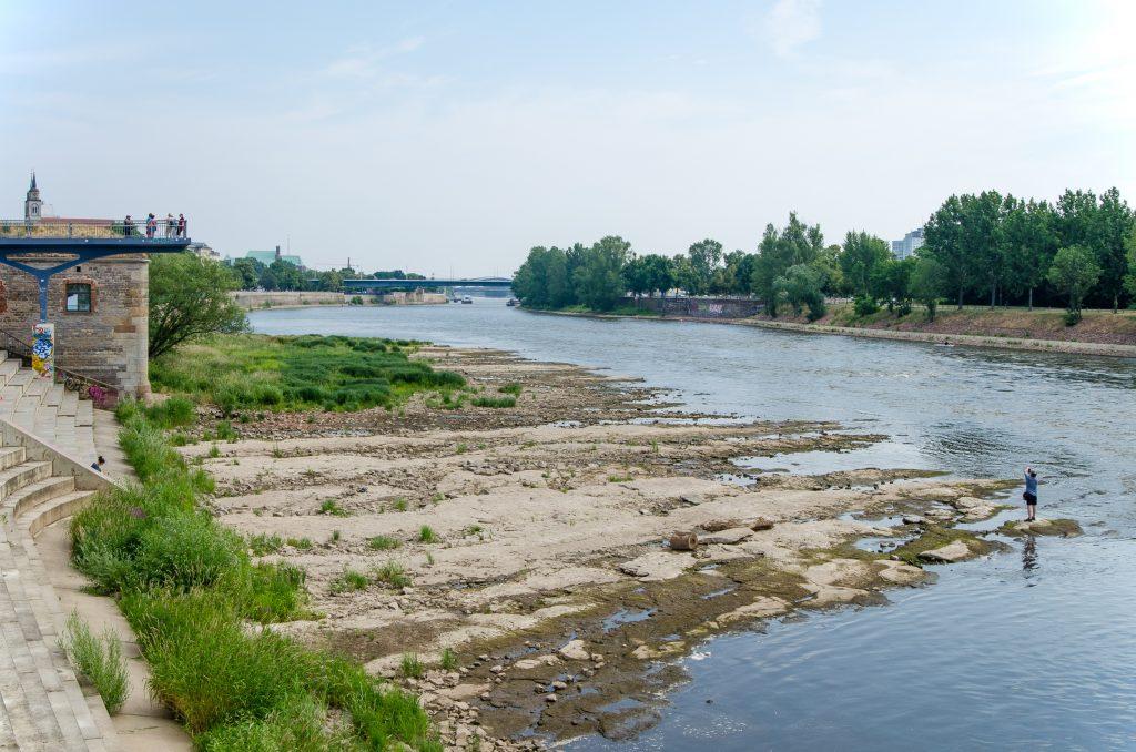 Die Dürre in Deutschland wirkt sich auch auf die Flusskreuzfahrt aus. Das Niedrigwasser auf Donau, Elbe und Rhein beeinträchtigt zunehmend.