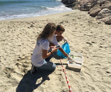 """Die Stiftung Costa Crociere Foundation fördert den Küstenschutz der """"Guardians of the Coast"""", einem der größten Bürgerforschungs-Projekte Europas."""