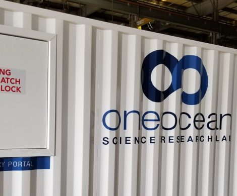 One Ocean Expeditions installiert ein spezialisiertes Labor für Expeditionen auf jedem Schiff und unterstützt so Wissenschaft und Forschung