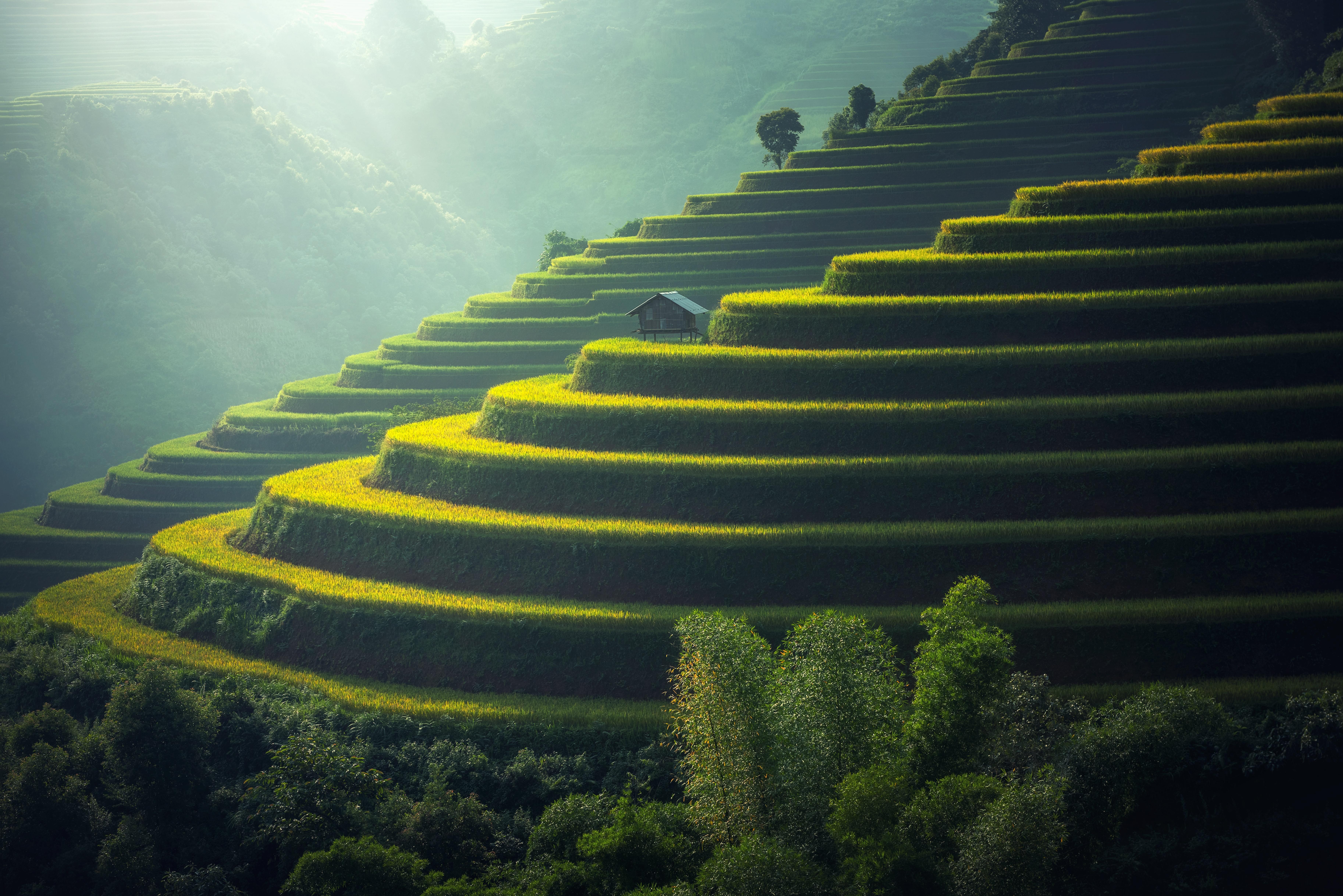 Das indonesische Urlaubsparadies Bali will eine neue Touristensteuer einführen. Ausländische Besucher sollen künftig 10 US-Dollar bezahlen.