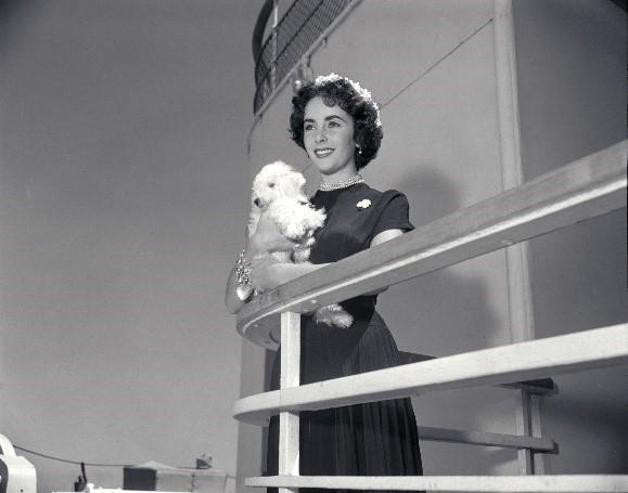 Teile des Elizabeth Taylor Nachlasses werden auf der Queen Mary 2 gezeigt und Gäste können bereits vor offiziellem Auktionsbeginn bieten.