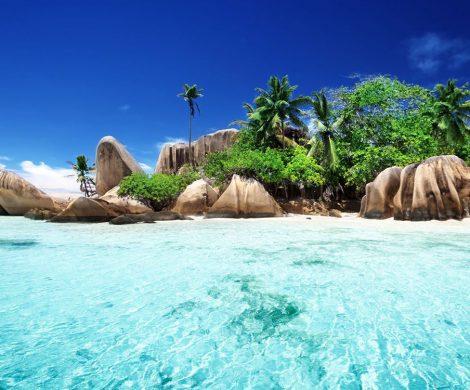 Polaris Tours startet mit zahlreichen Neuigkeiten in die Reisesaison 2020/2021. Als einziges Unternehmen im deutschsprachigen Raum hat Polaris einen eigenen Katalog, der sich ausschließlich den Warmwassergebieten Amazonas und Galápagos widmet. Neu kommen jetzt Reisen zur einmaligen Inselwelt der Seychellen hinzu,
