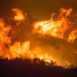 Norwegian Cruise Line spendet für Betroffene und Opfer der Brände in Australien und stellt 250.000 australische Dollar für Katastrophenhilfe bereit.