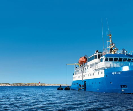 """Mit der """"Quest"""" für bis zu 48 Passagiere geht es durch das Wattenmeer"""