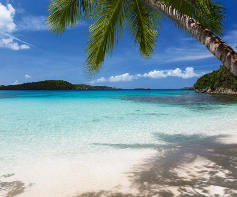 Langzeiturlaub auf einem Kreuzfahrtschiff: Die Mein Schiff 1 geht vom 10. 12. 2020 bis 14. 1. 2021 fünf Wochen auf Fahrt Richtung Karibik.