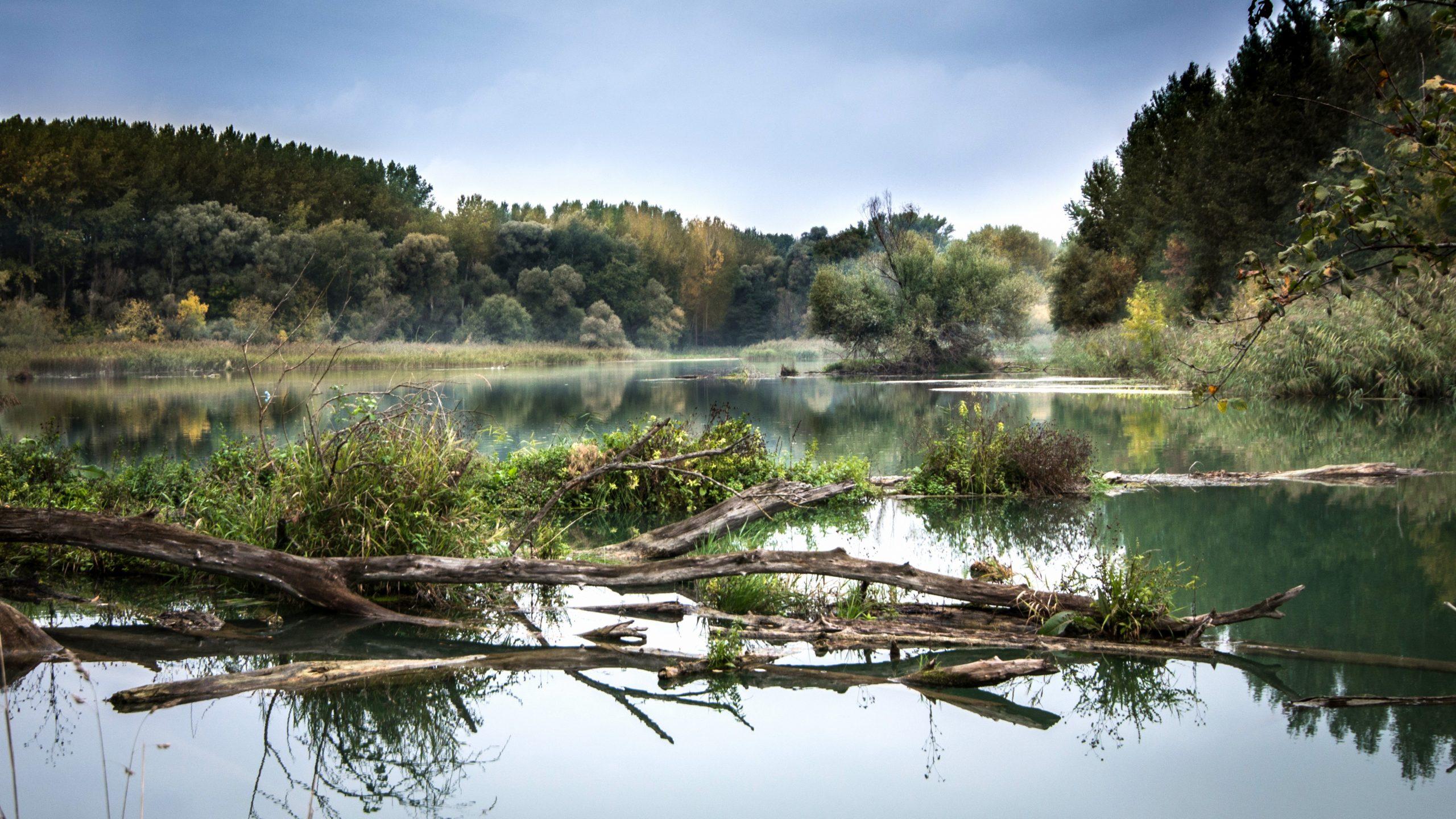 Die Stiftung Myclimate hat das Reisebüro Mittelthurgau als Vorreiter ganzheitlich nachhaltiger Flusskreuzfahrten ausgezeichnet.