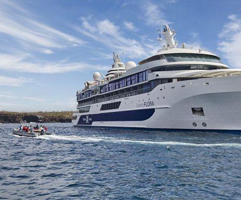 Die Celebrity Flora wird im Jahr 2023 rund um die Galapagos-Inseln starten, mit der Outer Loop und der Inner Loop-Route, mit vielen Tierbeobachtungen