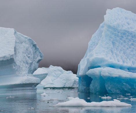 Die Eisberge schimmern in unterschiedlichen Farben