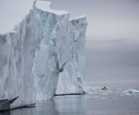Mit Zodiacs geht es nah an die gewaltige Eiswand