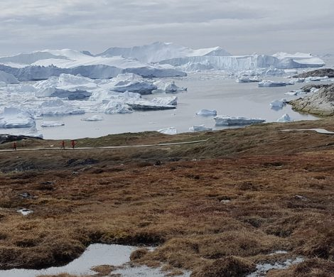 Dutzende Eisberge schwimmen im Fjord bis sie auf das offene Meer gelangen