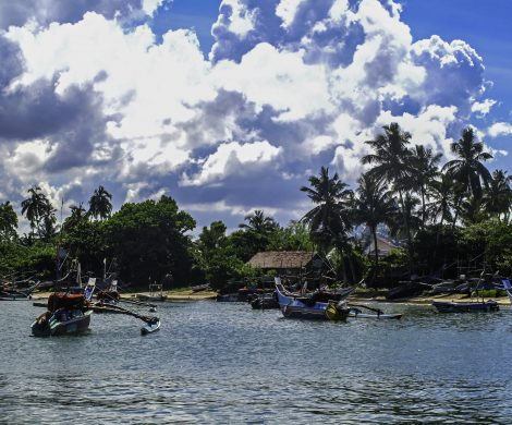 G Adventures bietet jetzt auch Segelreisen in Sri Lanka an