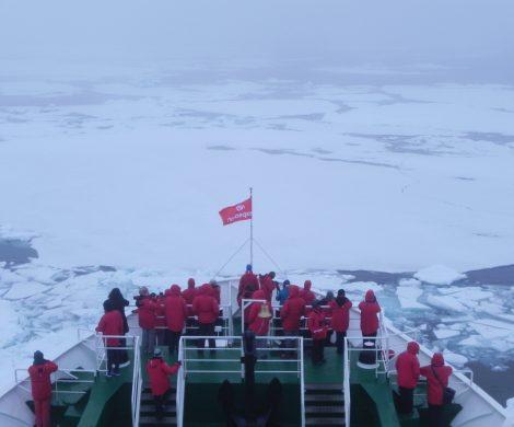 An der Eiskante: selbst einjähriges Eis ist kein Problem für das Schiff