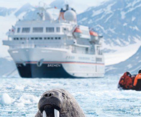 Der neue Katalog von Hapag-Lloyd Cruises für das Expeditionsschiff MS Bremen ist erschienen. Zwischen Februar 2019 und September 2020 gibt es eine Arktis-Umrundung in 72 Tagen, dazu kommen Fahrten von Argentinien nach Neuseeland und durch den Indischen Ozean.