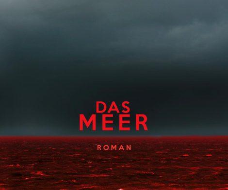 Rezension des Ököthrillers Das Meer von Wolfram Fleischhauer aus dem Verlag Droemer-Knaur. Ein absoluter Tipp, spannend geschrieben und klasse recherchiert.