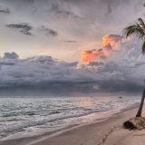 500 Euro pro Person sparen Frühbucher beim Inselhopping in der Karibik mit der MSC Preziosa mit zwölf Insel-Highlights in zwei Wochen