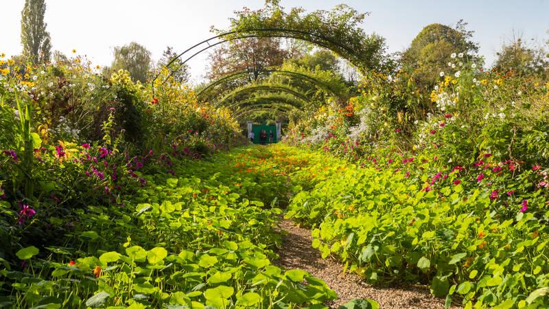 Im Mai 2019 erleben die Gäste der MS EUROPA von Hapag-Lloyd Cruises mit einer Gartenreise die blühende Gartenpracht der Mittelmeerküste.