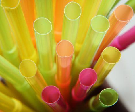 Auf der MS VASCO DA GAMA gibt es Getränkepakete für Kinder, inkludiert sind heiße Schokolade, alle Softdrinks sowie alkoholfreie Cocktails.