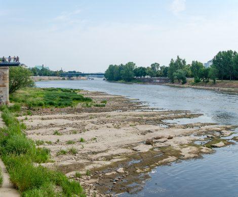 Aufgrund der sinkenden Pegelstände und damit Niedrigwasser drohen Anbietern von Flusskreuzfahrten auf der Donau und dem Rhein mit seinen Nebenflüssen hohe Einbußen.