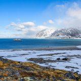 Ponant geht wieder auf Arktis-Expeditionen. Das Programm umfasst fünf Arktis-Kreuzfahrten an unterschiedlichen Terminen.