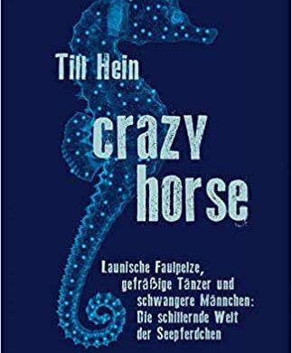 """Rezension Buchkritik """"Crazy Horse"""" von Till Hein, mare Verlag. Sehr informativ, unterhaltsam und auch für Laien sehr gut geeignet."""